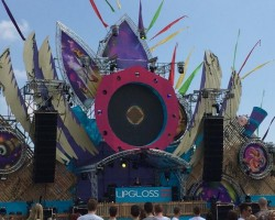 Report: Wildness Festival 2014