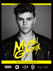 Martin Garrix and friends