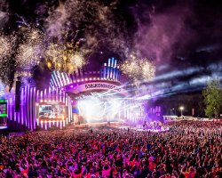 Report: 538 Koningsdag