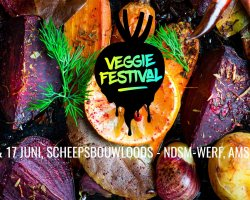Van burgers tot biertjes: állemaal vegan op het Veggie Festival