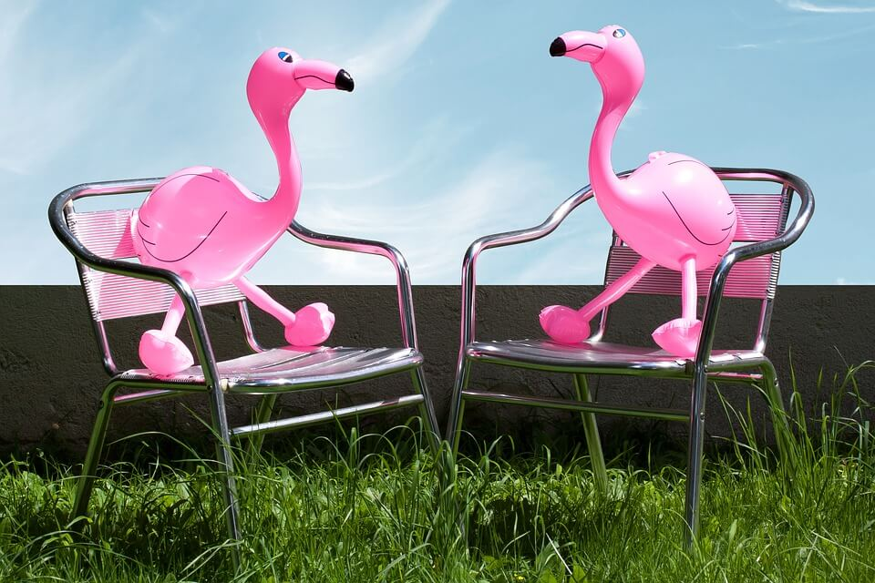 flamingo-festival-camping