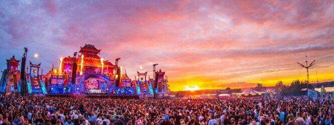 Report: Dreamfields 2019
