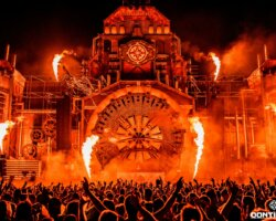 Report: The Qontinent 2019 (weekend)